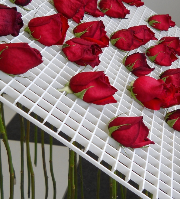 detail of withering roses in installation