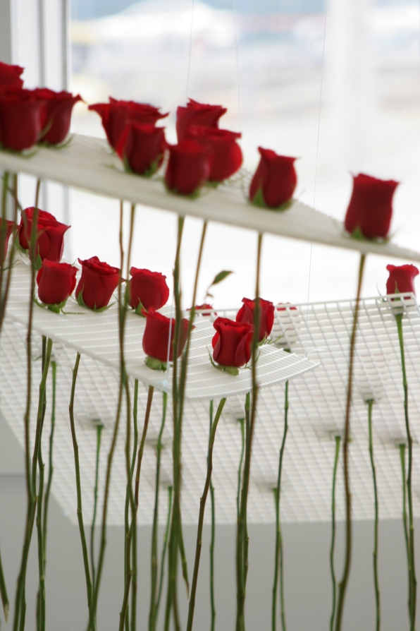 cleaned roses hanging in grids