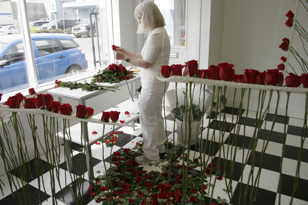 making an installation from roses in studio window
