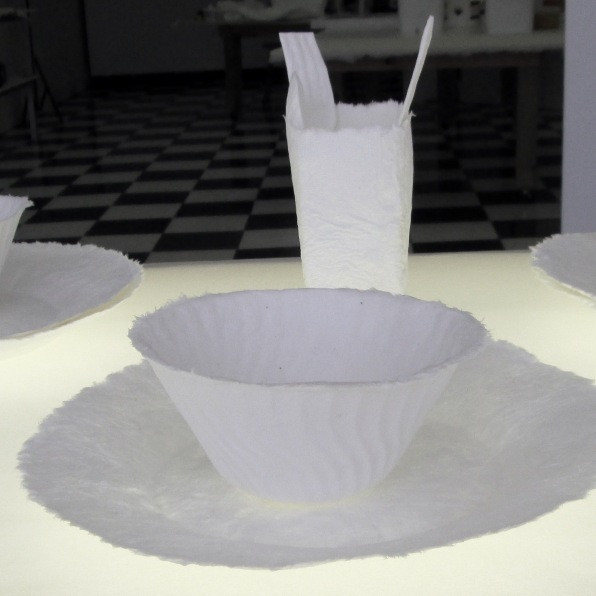 cast paper plates, bowls, glasses, cutlery