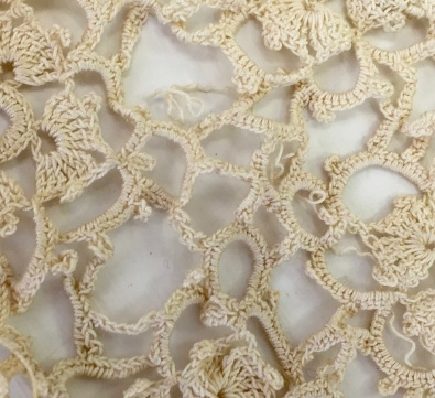 Isabella's lace