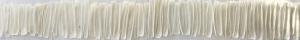 wax castings of celery sticks
