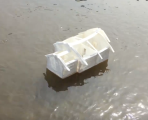 smallest house model floating down the fraser river