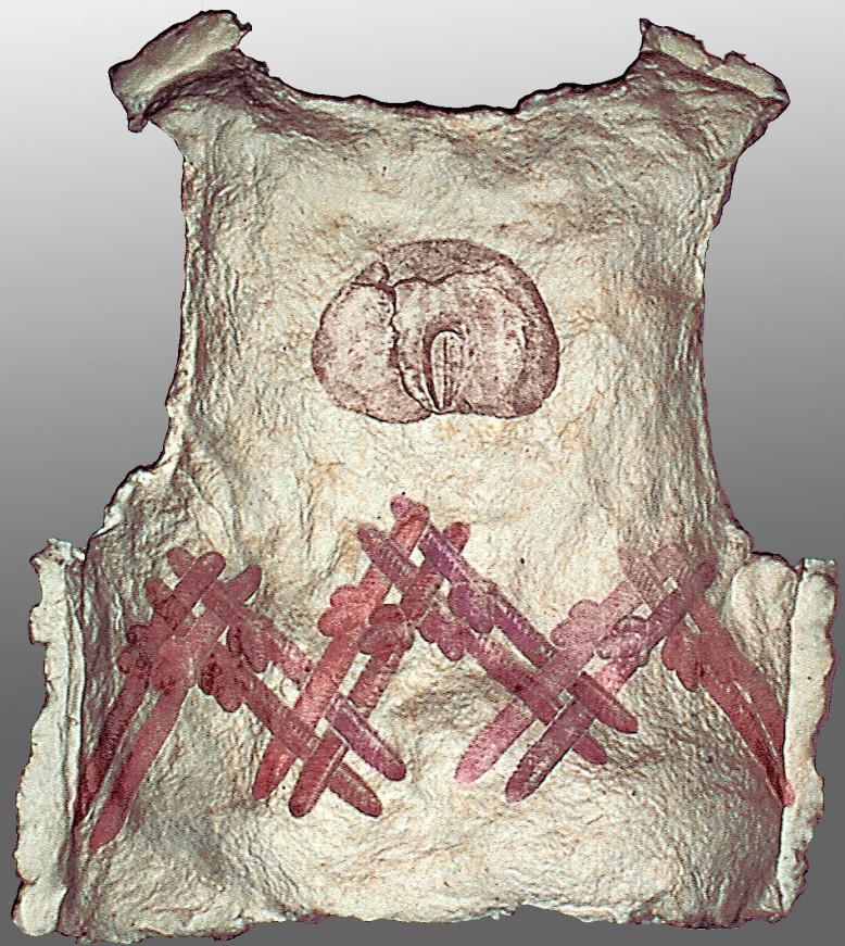 vest-back-copy