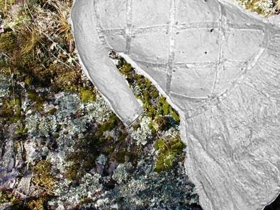 ancestor dress & lichen