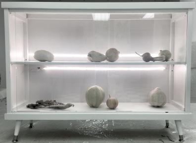 glass door specimen cabinet with wax encased vegetables inside led lights inside cabinet