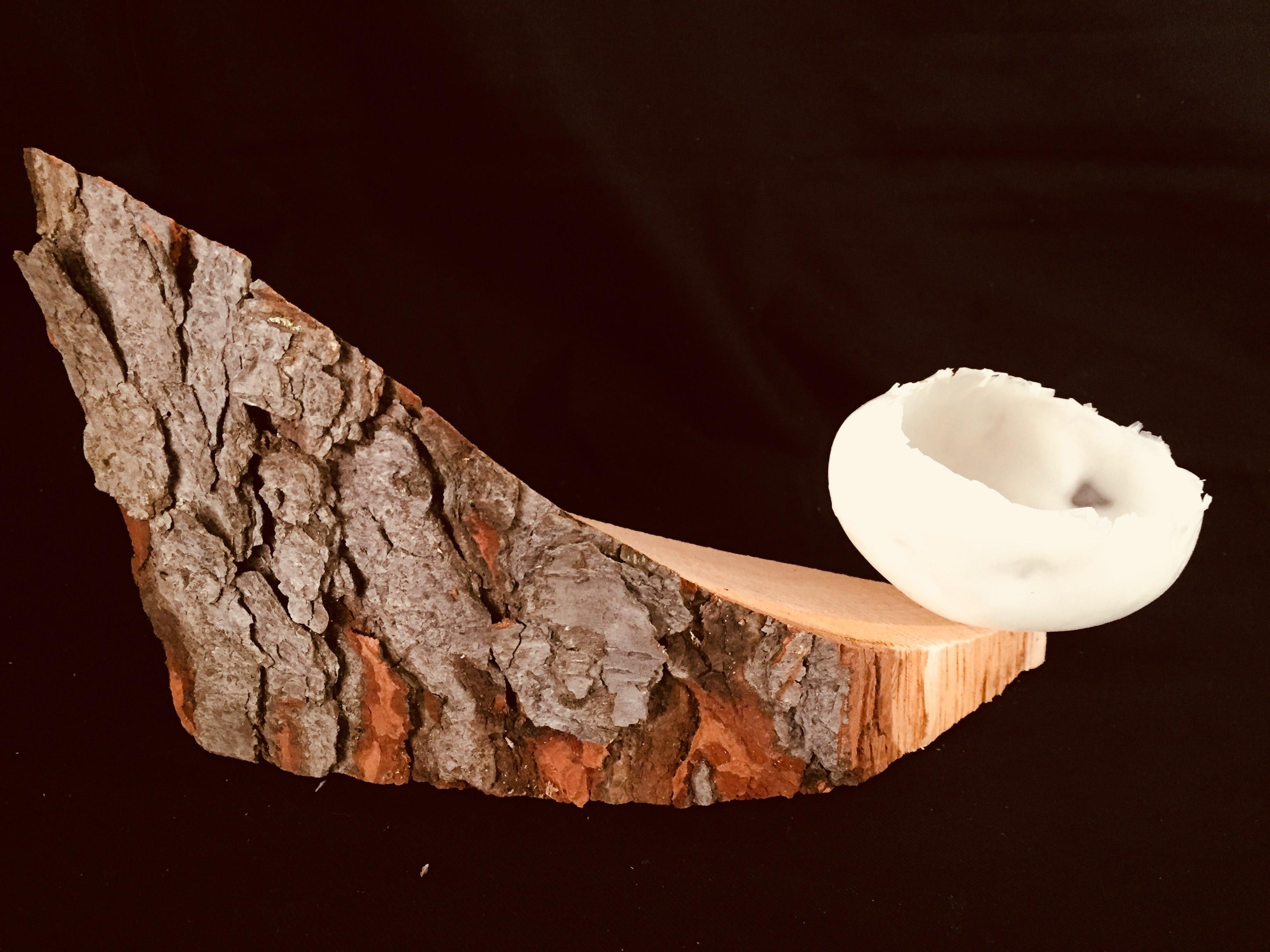 found wood, cast wax vegetable